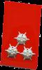 Bild Hauptfeuerwehrmann